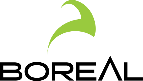 Boreal logo with a white background, black text and a lime green swoosh image
